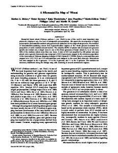 WHEAT (Triticum aestivum L. em. Thell.) is one of important genes or QTL (quantitative trait loci), amajor