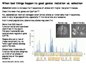When bad things happen to good genes: mutation vs. selection