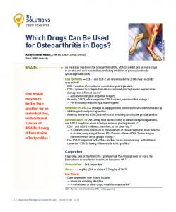 Which Drugs Can Be Used for Osteoarthritis in Dogs?