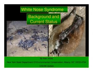 White Nose Syndrome Background and Current Status