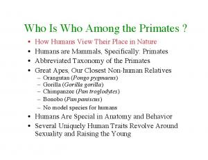 Who Is Who Among the Primates?