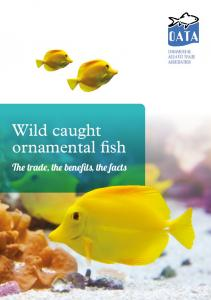 Wild caught ornamental fish. The trade, the benefits, the facts