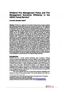 Wildland Fire Management Policy and Fire Management Economic Efficiency in the USDA Forest Service 1