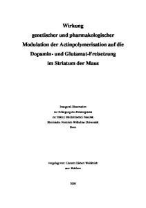 Wirkung genetischer und pharmakologischer Modulation der Actinpolymerisation auf die Dopamin- und Glutamat-Freisetzung im Striatum der Maus