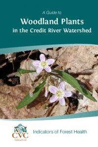 Woodland Plants in the Credit River Watershed