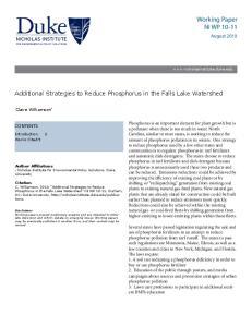 Working Paper NI WP 10-11