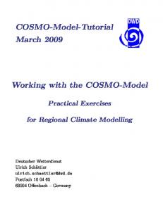 Working with the COSMO-Model
