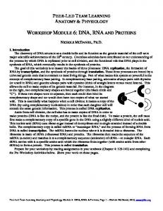 WORKSHOP MODULE 6: DNA, RNA AND PROTEINS