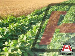 World and Brazilian Fertilizer Market MARCH Company Overview