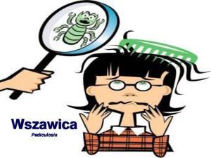 Wszawica Pediculosis