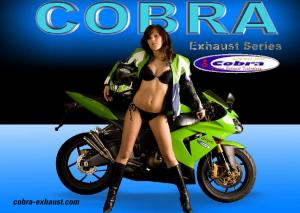 Yamaha XJR Dual Slipon Series 4in1 Series. Yamaha V- max Dual Slipon Series 4in2in1 Series. Yamaha R6 Slipon, High up Series Moto GP Series