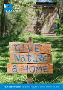 Your starter guide to giving nature a home where you live
