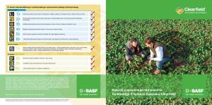 Zasady poprawnego stosowania Technologii Produkcji Rzepaku Clearfield